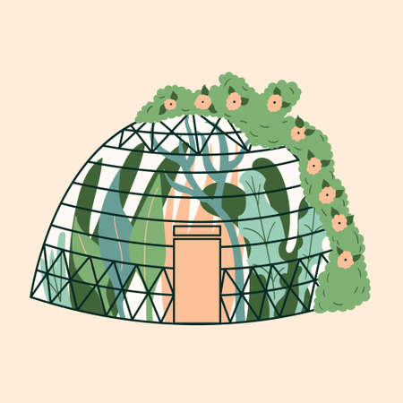 Modern home greenhouse in the form of a dome with plants. Garden, climbing up the ivy. Winter glass garden, a greenhouse is a house with a plantation. The room is green. Gardening on the site. Vector