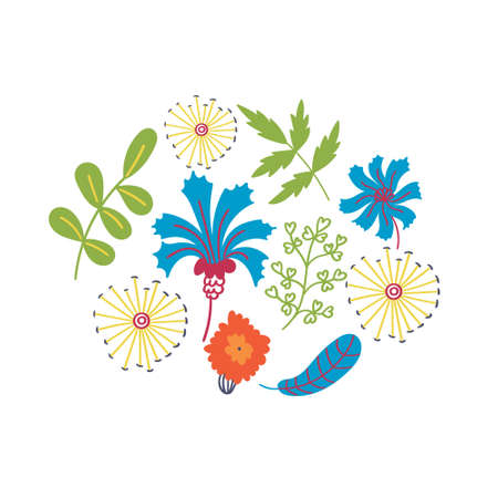 T-shirt print cornflowers dandelions and leaves