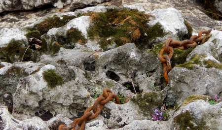 rusty chain: Old sea stone with moss and rusty chain