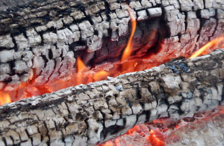 Closeup shot of burned logs and ashes Stock Photo