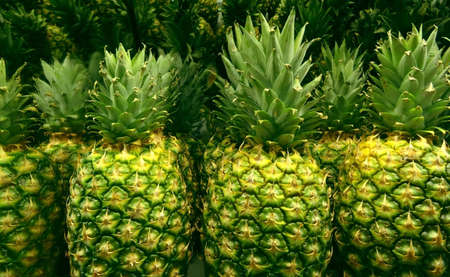 store shelf: Pineapple with stacks on shelf in fruits store