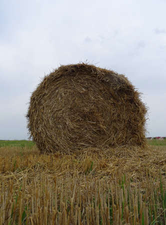 Traditional round hayrick after field harvesting stock photo Stock Photo