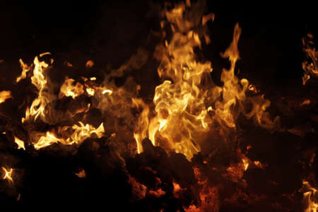 Household waste burning in fire Stockfoto