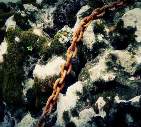 Rusty Chain On The Sea Stone Overgrown The Moss
