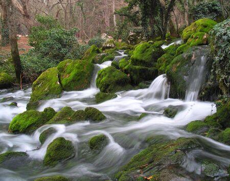 The mountain river in Crimea Stockfoto