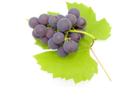 Brush and sheet of a grapes on a light background