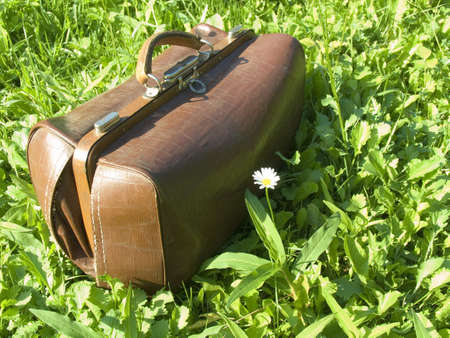 Old sac in a grass on a green lawn Stockfoto