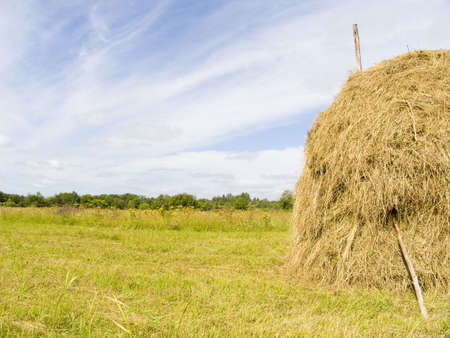 summer landscape with a stack of dry hay photo