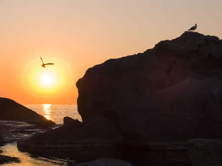 Sunrise on the sea. In the sky the seagull soars. In the sea fishing boats. photo