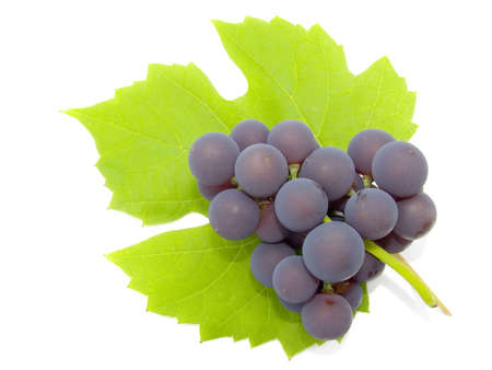 Cluster of a grapes on green to a leaf. The isolated image on a white background