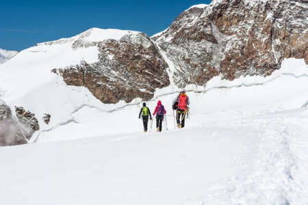 crampon: Group of climbers walking on a glacier. Monte Rosa massif,
