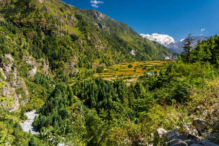 nepali: Village surrounded by lentil fields. Nepali traditional settlement in under Himalayas.