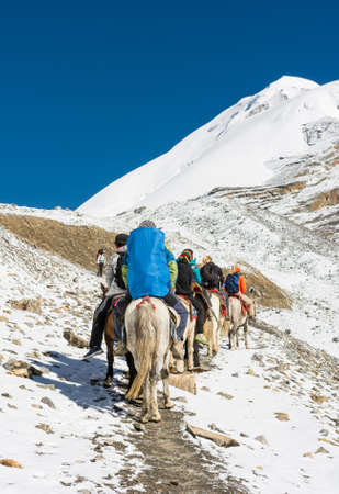Group of people riding ponies across mountain pass. Thorong La in Nepal.