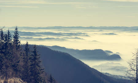 mists: Aerial view of mists covering valley.