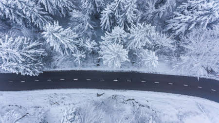 Aerial view of road through a winter forest. Standard-Bild