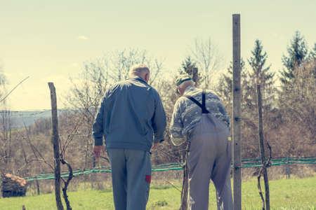Rear view of pair of men doing work in vineyard.