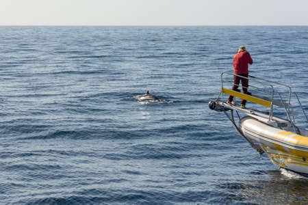 Marine biologist doing research and photographing whales. Archivio Fotografico - 120961099
