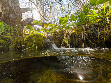 Split view of forest creek with small cascade. Plitvice national park.
