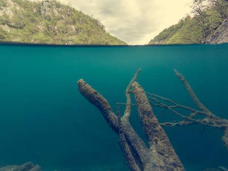 Amazing split view of lake with sunken tree trunk. Plitvice national park, Croatia.