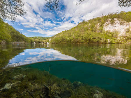 Split view of crystal clean water with flora and fauna. Lake plitvice national park, Croatia.