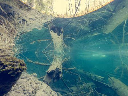 Amazing split view of lake with sunken tree trunk.