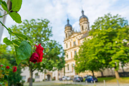 Beautiful rose growing in front of picturesque baroque abbey. Banco de Imagens