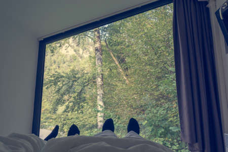 Cozy point of view from bed looking through window into forest.