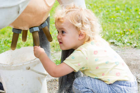 Cute blonde girl learning how to milk a cow on milking simulator. Stock Photo