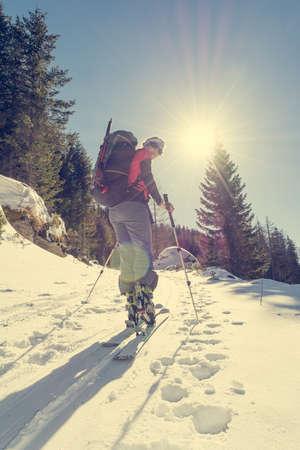 Female ski tourer ascending a forest slope. Back country skiing. Foto de archivo