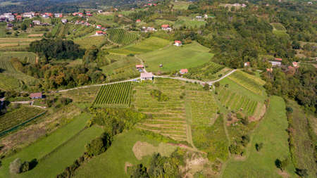 Spectacular aerial view of countryside with many fields and vineyards.