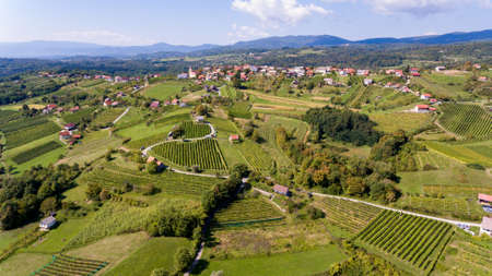 Spectacular countryside aerial view of many fields and vineyards.
