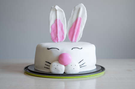 Delicious homemade cake shapped like at bunny rabbit. Hand made tasty sweet for children.