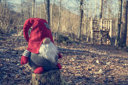 Dwarf doll wearing red hat sitting in a forest. 版權商用圖片