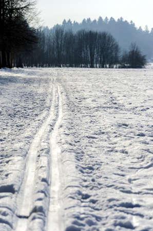 nordic ski: Recreational nordic ski track  Stock Photo