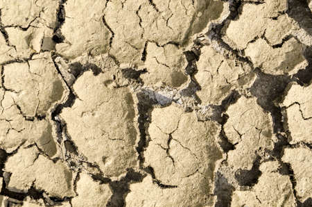 Close up texture of dry and cracked earth  photo