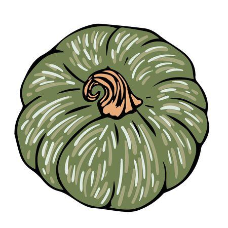 doodle green pumpkin black line sketch isolated vector illustration for design and decoration Иллюстрация