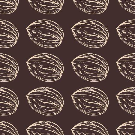 Walnut line sketch vertical pattern vector illustration for design and decoration
