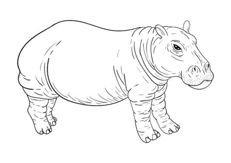 Hippopotamus coloring, black outline, isolated on white background