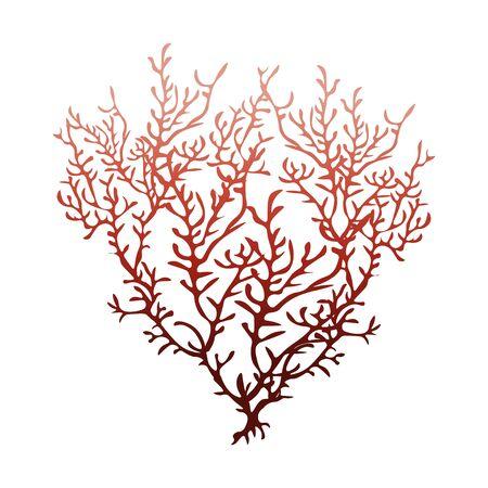 Corail rouge isolé sur fond blanc, illustration vectorielle stock pour la conception et la décoration, carte postale, carte de visite, bannière, thème marin, autocollant, aquarium