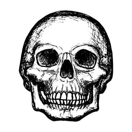 Sketch of a human skull, black outline on a white background, stock vector illustration, for design and decoration, gothic, halloween, poster, banner Ilustracje wektorowe