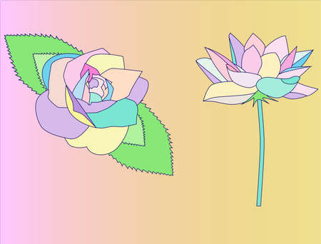 flowers in pastel colors, rose and the unknown