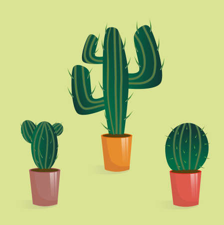 set of cacti in multi-colored pots