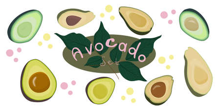 The avocado set is isolated on a white background. Various avocado slices around the inscription and twigs. Vector illustration in a flat style. Fruits for a healthy diet.