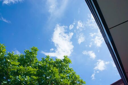 naturalistic: The blue sky and cloud in the evening Stock Photo
