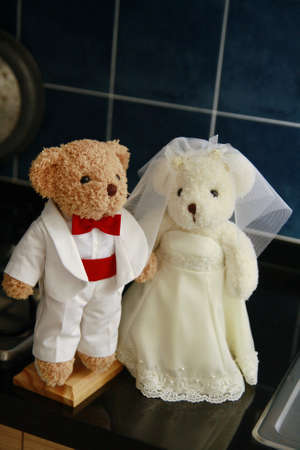 mate married: Groom and bride doll in kitchen
