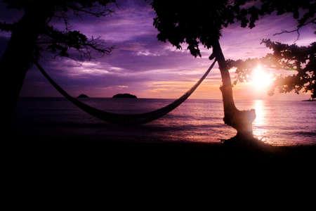 hammock with threes on beach and purple sunset