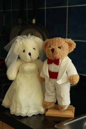 Groom and bride doll in love  Stock Photo - 8816814