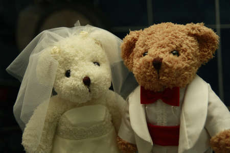 Groom and bride bear doll Stock Photo - 8816815