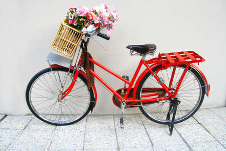flower on a bicycle  photo