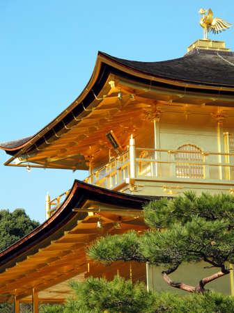 pavillion: close up Kinkakuji Temple roof and gold bird on top, Japan Editorial